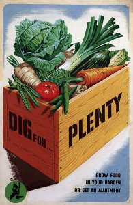 Dig for plenty poster