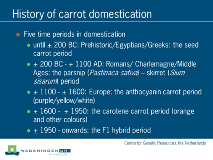 Graphic - History of carrot domestication - key periods