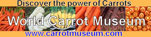 World Carrot Museum - carrots logo